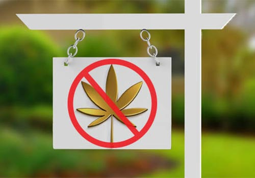 52% Of Canadians Less Likely To Buy Homes Where Legal Pot Was Grown: